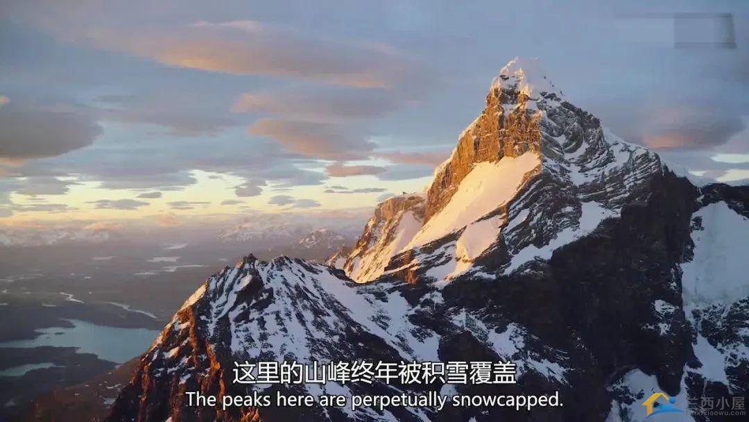 """16部超赞自然纪录片,让孩子足不出户看到地球的""""真实面目""""!-37.jpg"""